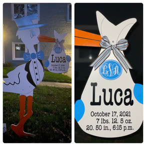 Baby Stork MD (240)863-2873 ~ Birth Announcement Lawn Signs ~ Bethesda Maryland