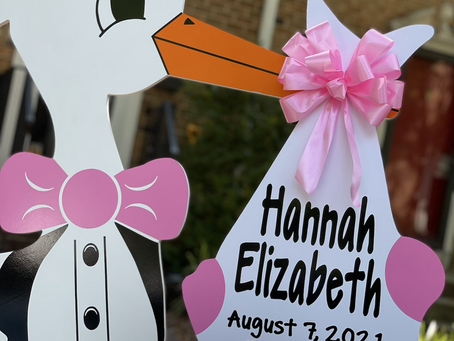 Baby Stork MD (240) 863-2873 ~ Stork & Carriage Rental Yard Signs ~ Silver Spring Maryland