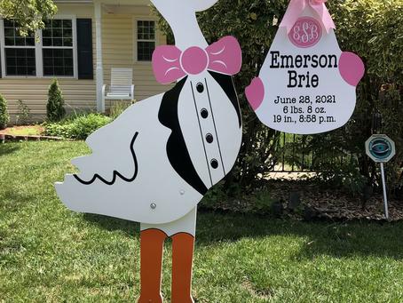 Baby Stork MD (240)863-2873 ~ Monogram Stork Announcement ~ Silver Spring Maryland