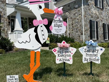 Baby Stork MD Stork & Carriage Rental Service (240) 863-2873 ~ Silver Spring Maryland