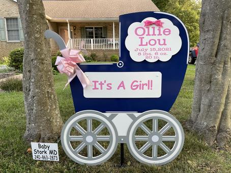Baby Stork MD (240)863-2873 ~ Baby Stroller Birth Announcement ~ Washington DC