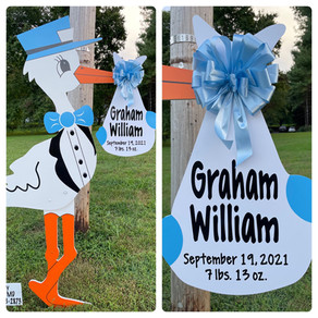 Baby Stork MD (240) 863-2873 ~ Best Baby Gift Of All Times ~ Washington DC