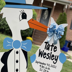 Baby Stork MD (240)863-2873 ~ Family & Friends Baby Gift Announcement ~ Cheverly Maryland