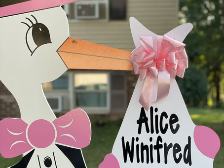Baby Stork MD (240) 863-2873 ~ Baby Yard Birth Announcement ~ Elkridge Maryland