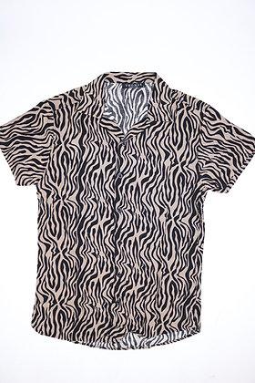 Wacky Zebra