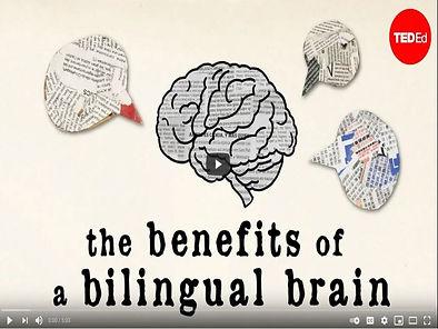bilingual brain.JPG