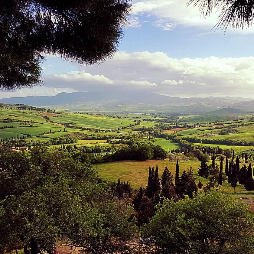 Тоскана. Холмы. Кипарисы
