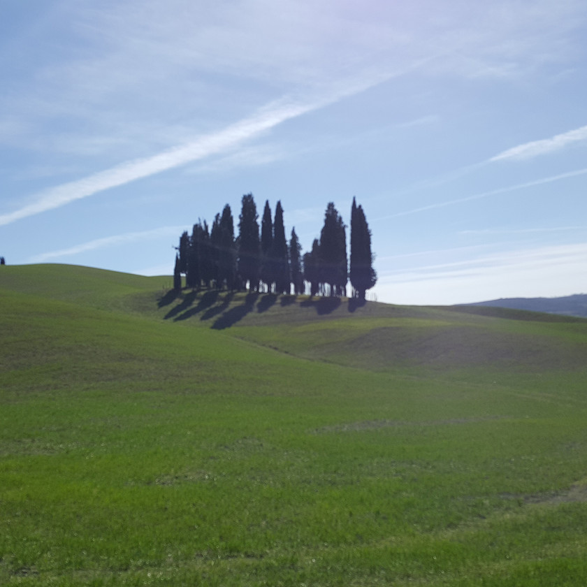 Тосканские холмы. Кипарисы.