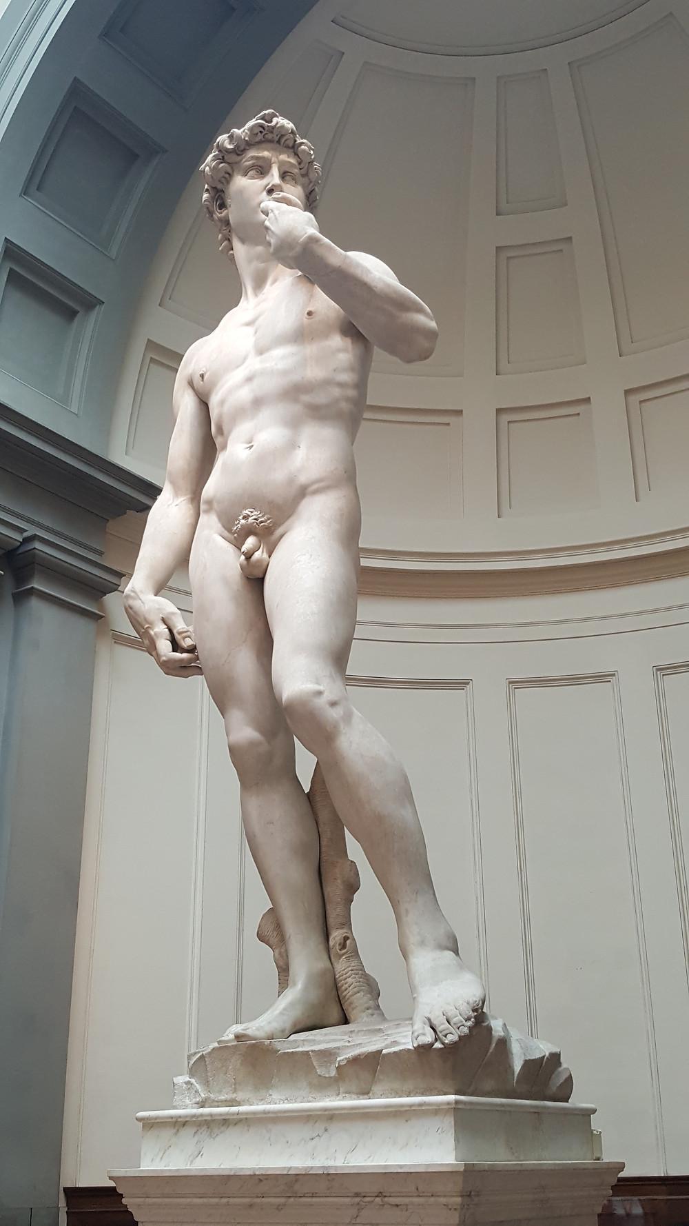 Оригинал статуи Давида Микеланджело в Музее Академии