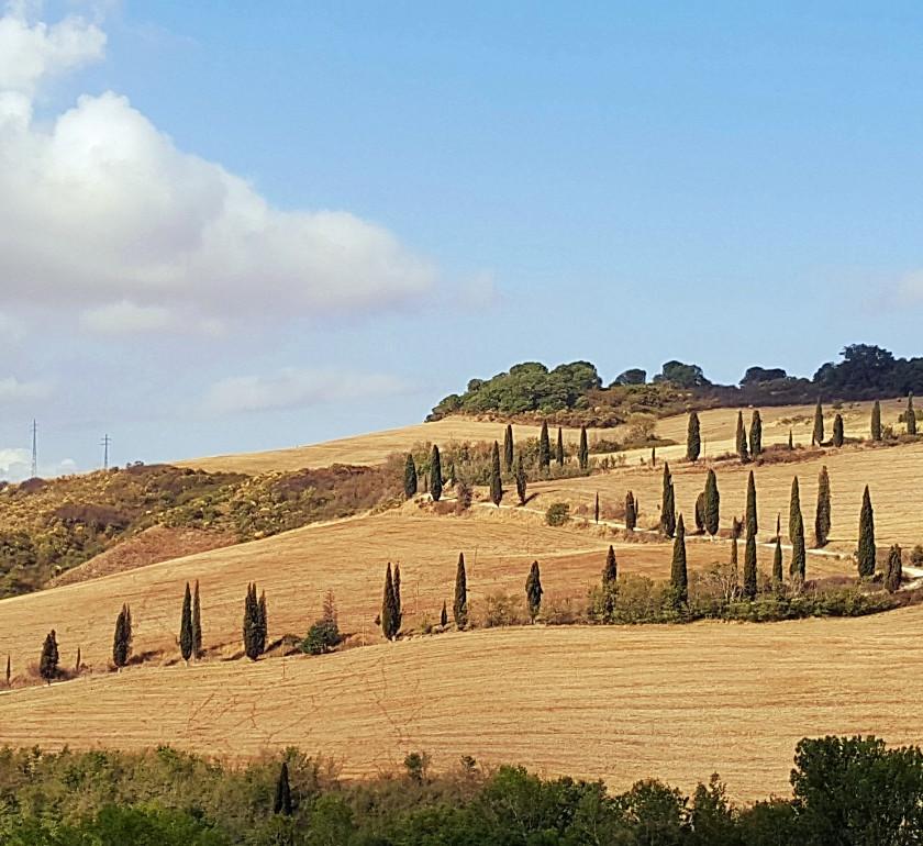 Тоскана. Кипарисовая дорожка