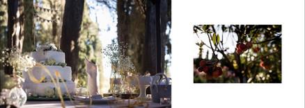 Свадьба во Флоренции. Организация свадеб. Подбор локации, свадебная фотосессия.