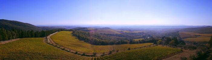 По Тосканским холмам.jpg