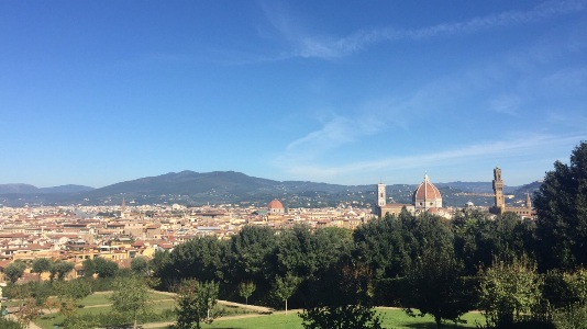 Florence: panoramic view