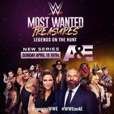 WWEs-Most-Wanted-Treasures_logo1.jpg