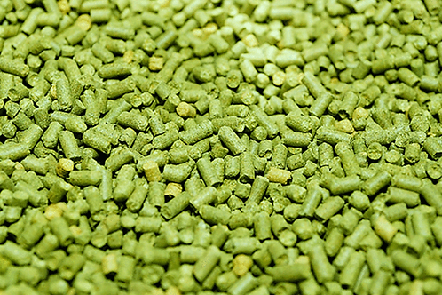 Luppolo Brewer's Gold 1Kg PELLET