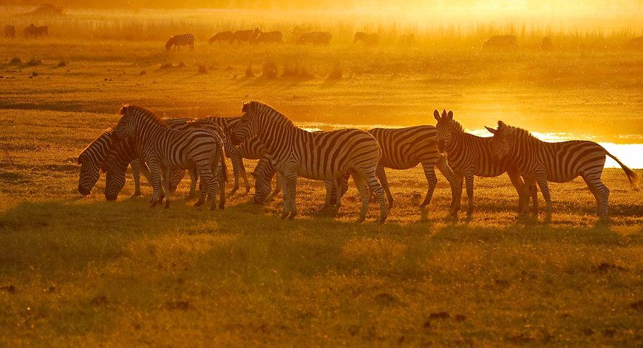 Botswana ACCOMMODATED Tour 1.jpg
