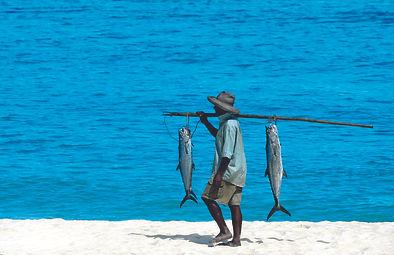 CLTMB-Fishing2.jpg