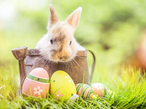 What's in your Easter Eggs in April?