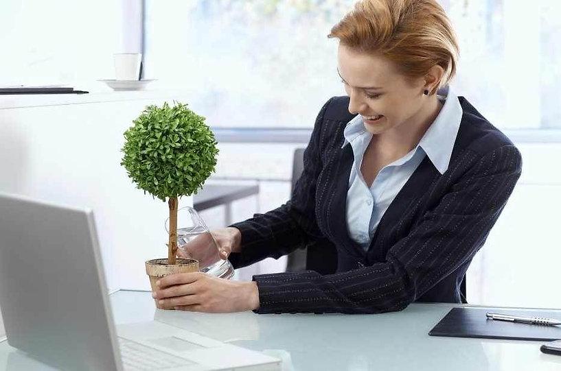 Happy workforce, mindfulness at work