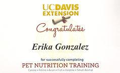 Certified in Dog Nutrition