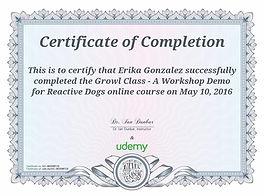 Certificate for Reactive Dogs Class - Dr. Ian Dubar