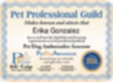 Certified Dog Trainer - Pet Dog Ambassador