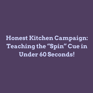 How to Teach the Spin Cue in Under 60 Seconds