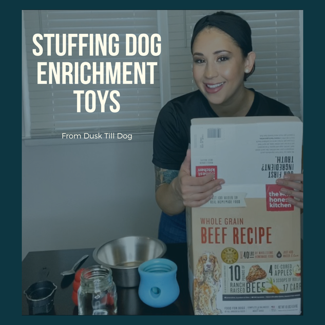 How to Fill Dog Enrichment Toys