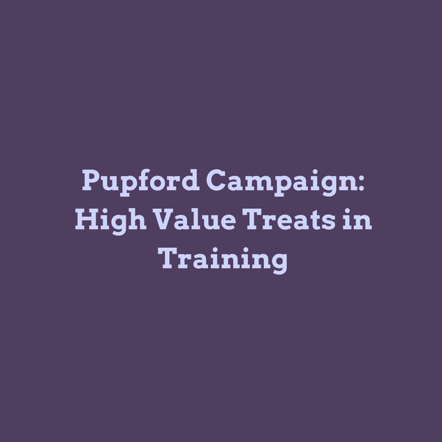 Trainer Tip: High Value Treats