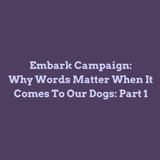 Why Words Matter When It Comes to Our Dogs: Part 1