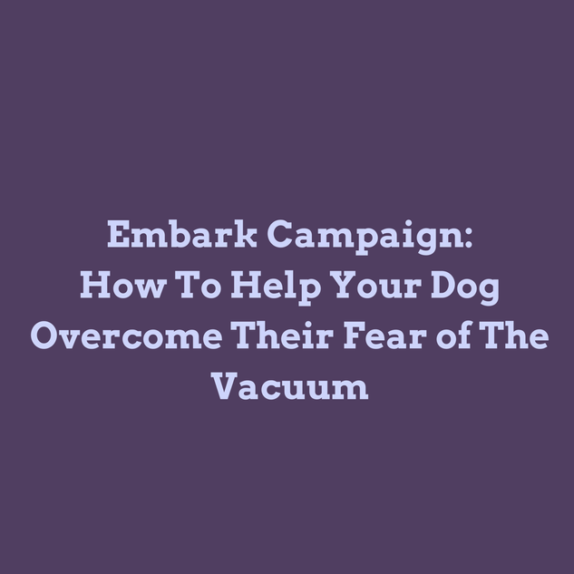 Wagoween Trainer Tip - How to Help Your Dog Overcome Their Fear of the Vacuum