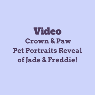 Crown & Paw Reveal Video
