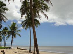 Praias, lugares e momentos