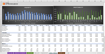 KPIs and Ratios.png