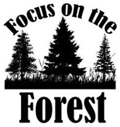 Focus on the Forest graphic.jpg