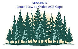 Forestry ACE Cap.jpg