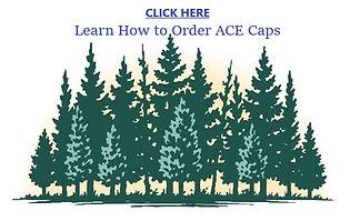 Forestry ACE Cap.jpg