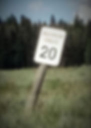speedlimit20.jpg