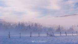 ambiance hivernale2