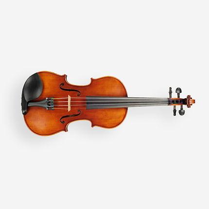 Скрипка Fabio