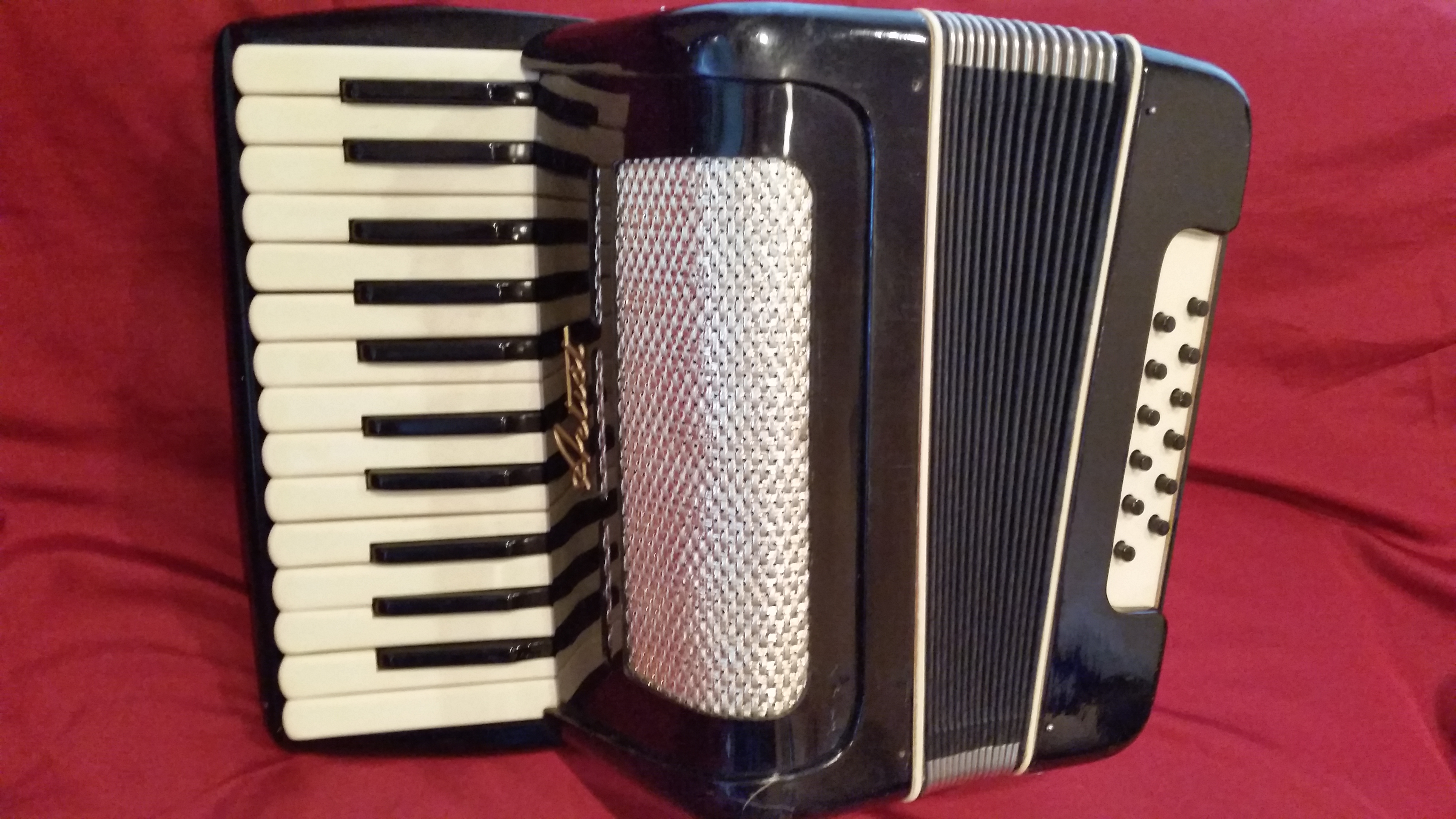 Artist student or child accordion.jpg