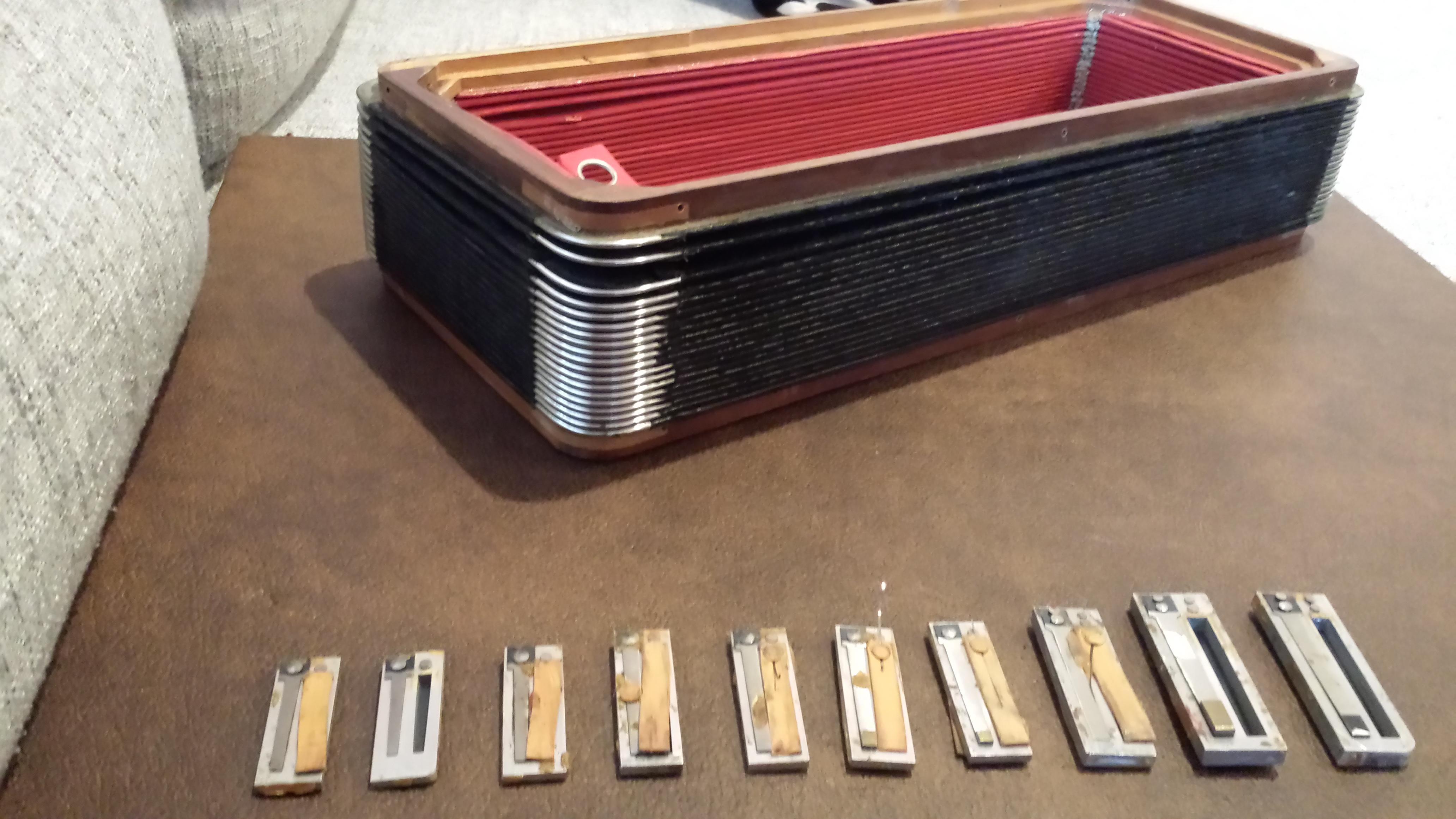 Accordion repair. Bellow repair and reeds cleaning..jpg