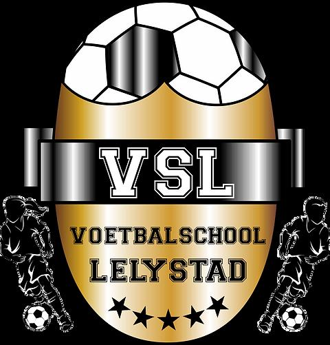 logo vsl gold black png.png