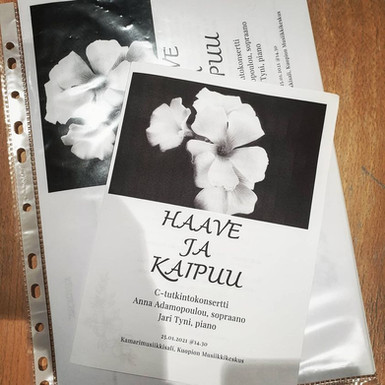 Haava ja Kaipuu tutkintokonsertti 1.2021