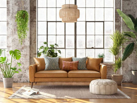 Air-Purifying Plants to Bring a New Life to Your Home