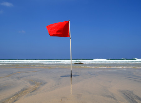 Screening for Red Flags by an Orthopedic Manual Physical Therapist