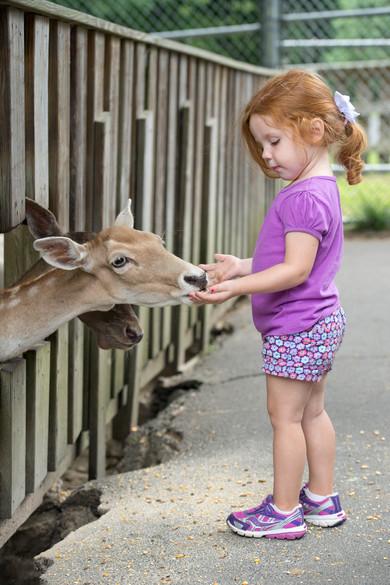 Deer Park Zoo.jpg