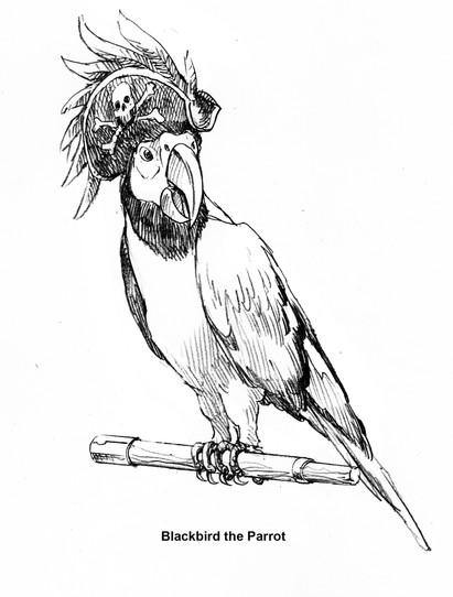 blackbird the parrot rough copy.jpg