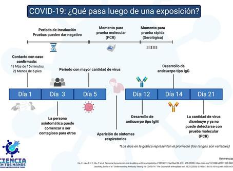 ¿Qué pasa luego de una exposición a COVID-19? 🦠