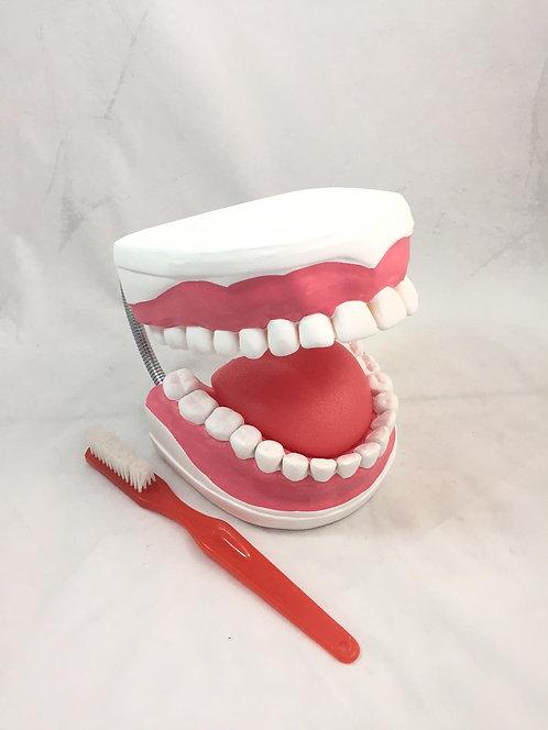 Modelo Cuidado Dental
